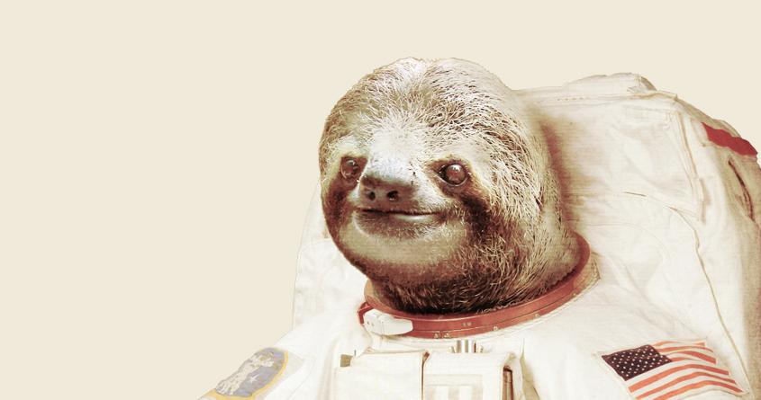 astronaut sloth a cool t shirt by bakuspt on threadless